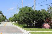 The Corals Neighborhood Sign