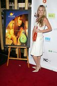 SANTA MONICA - JULY 23: Katie Whicker at the Sexy Summer Soire Party hosted by H.U.G.E benefiting He