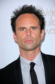 Walton Goggins at the 2013 Writers Guild Awards, JW Marriott, Los Angeles, CA 02-17-13