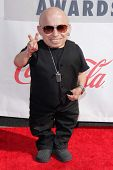 Verne Troyer at the 3rd Annual Streamy Awards, Hollywood Palladium, Hollywood, CA 02-17-13