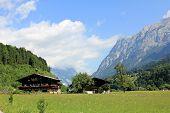 Swiss Alps summer landscape