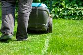 Green Grass Is Mowed Lawn Mower
