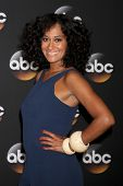 LOS ANGELES - JUL 15:  Tracee Ellis Ross at the ABC July 2014 TCA at Beverly Hilton on July 15, 2014