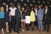 LOS ANGELES - JUL 15:  How to Get Away WIth Murder Cast  at the ABC July 2014 TCA at Beverly Hilton