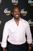 LOS ANGELES - JUL 15:  Billy Brown at the ABC July 2014 TCA at Beverly Hilton on July 15, 2014 in Be