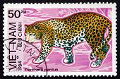 Postage Stamp Vietnam 1984 Leopard, Big Cat