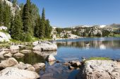pic of beartooth  - Alpine lake along the Beartooth Highway in Wyoming - JPG