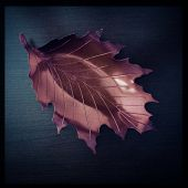 Instagram filtered image of a red metallic fall leaf