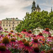 Garden In Wawel Castle, Cracow, Poland