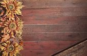 Fall Border With Sunflowers On Grunge Red Wood Background