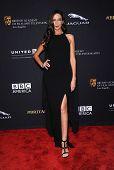 LOS ANGELES - OCT 30:  Terri Seymour arrives to the BAFTA Jaguar Brittannia Awards 2014 on October 30, 2014 in Beverly Hills, CA