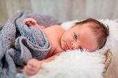 Newborn baby girl portrait