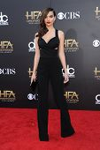 LOS ANGELES - NOV 14:  Emily Ratajkowski arrives to the The Hollywood Film Awards 2014 on November 14, 2014 in Hollywood, CA