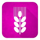 grain violet flat icon, christmas button, agriculture sign