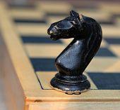 Chessman. Horse.