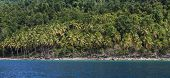 panorama of rain forest and beach on St Lucia seen from sea