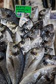Постер, плакат: Fish Market In Bologna