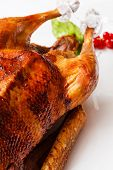 Roasted goose