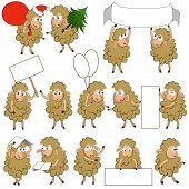 Set of various cartoon sheeps in various poses