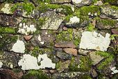 Old Stone Wall With Green Moss