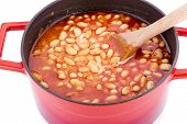 pic of phaseolus  - Cooked Bean Close - JPG