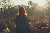 Young Woman Standing In Forest At Sunset