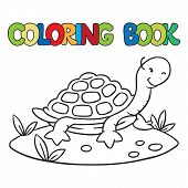Coloring Book Of Little Funny Turtle