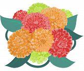 Flower zinnia bouquet