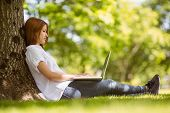 Pretty redhead sitting with her laptop in park on a sunny day