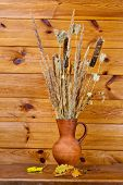 Clay Jug With Dry Stalks Of A Reed