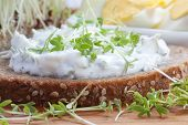 Curd cheese with cress