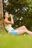 Fit brown hair sitting against tree drinking water in the park