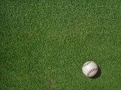 Baseball On Sports Turf Grass