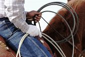 image of brahma-bull  - A cowboy waits to compete in the roping competition.  - JPG