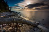 stock photo of driftwood  - Beautifu rocky sea shore with driftwood trees trunks at sunrise or sunset - JPG