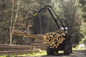 picture of skidder  - Special tractors for processing of harvested timber in the forest - JPG