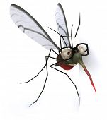 foto of mosquito repellent  - Mosquito - JPG
