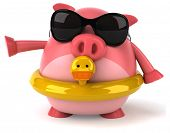 foto of floaties  - Fun pig - JPG