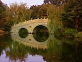 Bridge, water, trees, reflection in Hangzhou China