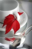 Caffee cup with red leaf