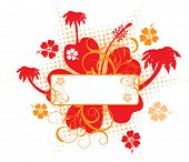 Hibiscus background, vector illustration
