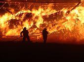 Rollo Fire
