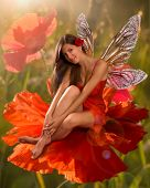 brunette girl elf with  is sitting on a flower poppy