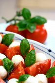 Plate Of Tricolore Salad Mozzarella With Tomatoes