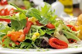 pic of close-up  - Fresh salad  - JPG