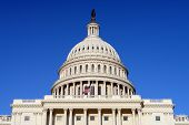 image of capitol building  - US Capitol and Flag - JPG