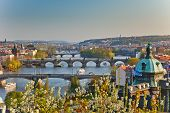 View on Prague at sunset