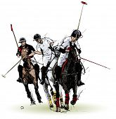 Vector illustration of polo players (hand drawing)