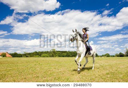 Постер, плакат: Конный спорт на лошадях, холст на подрамнике