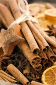Cinnamon Sticks with Dried Fruits